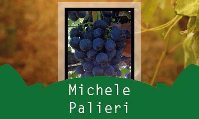 Michele Palieri